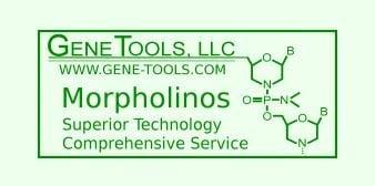 Gene Tools, LLC